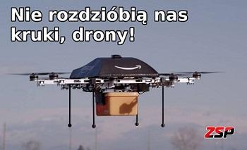 dronysmall.jpg